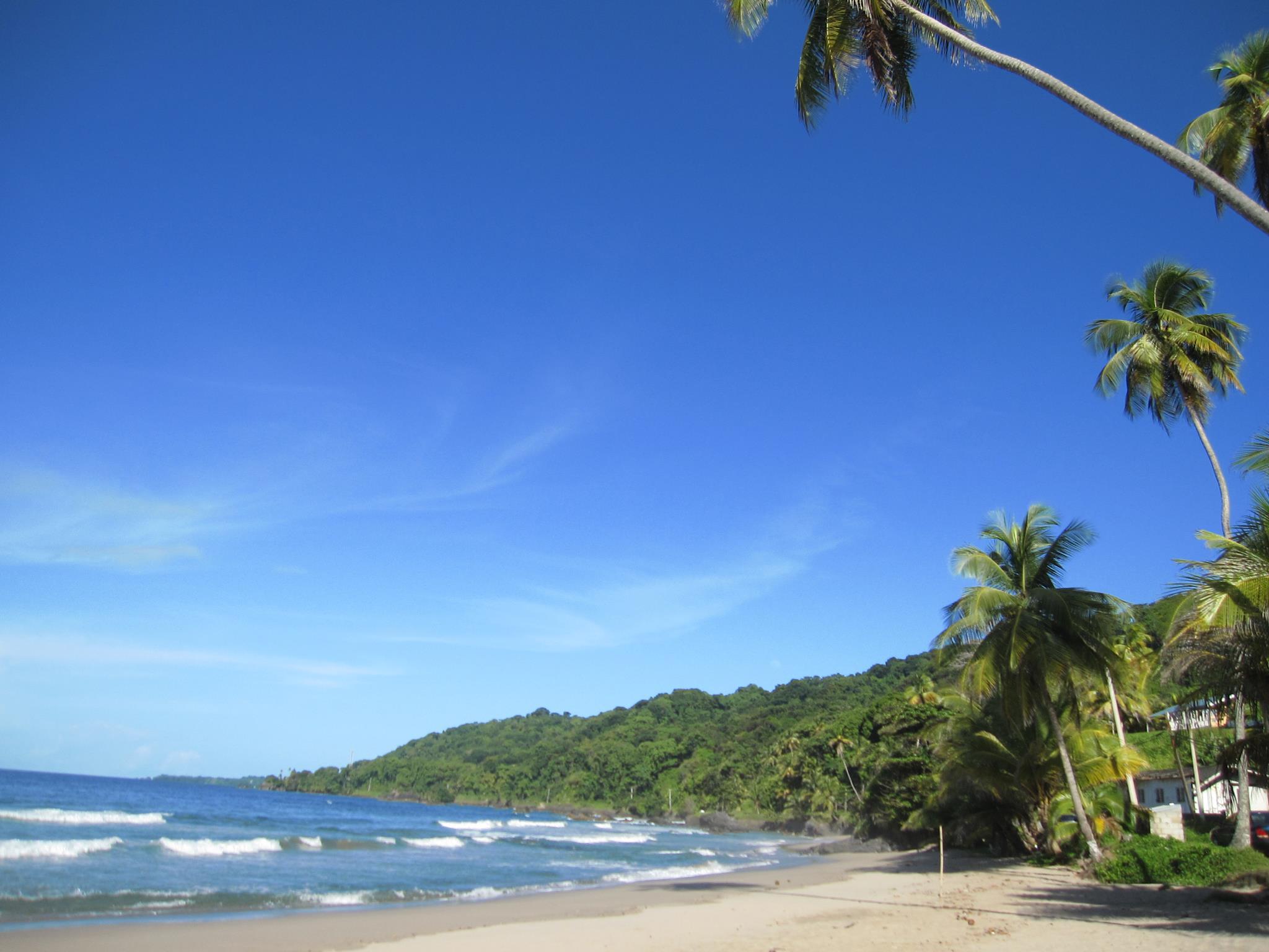 Island Appear Near Trinidad In The  S